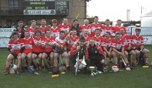 'Gaels and 'Mitchells into Warwickshire hurling final