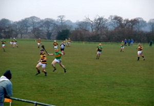 Meelin too strong for Manchester's gaels