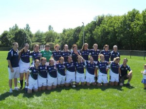 #275 Parnells and Aisling Gaels wave flag for Chicago